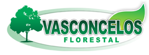 Vasconcelos Florestal